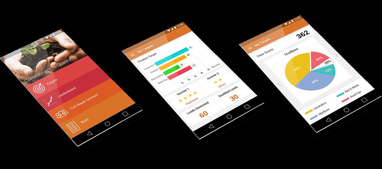 Enterprise Application for Sales Team
